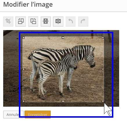 modifier images - rcadrer l'image